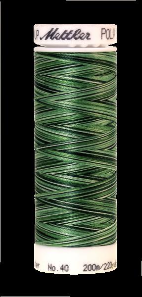 Stickgarn 200 Meter, Farbe:9805, Amann Poly Sheen Multi